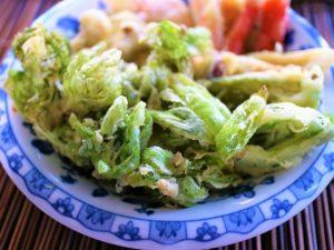春 山菜 ポルフェノール