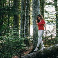 森林浴 森林セラピー